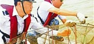 coast guard shenzhen bay fishing ban fisherman illegal nets