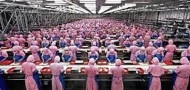 factory workers prd china