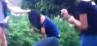 girl bullies maoming header