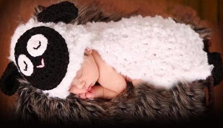 lamb baby